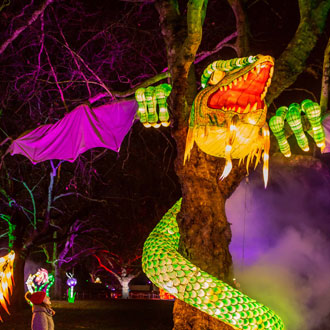 The jabberwocky at Alice In Winterland - Lightwater Valley