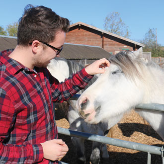 Man petting horse at the Redwings Horse Sanctuary