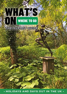 The surrey guide front cover